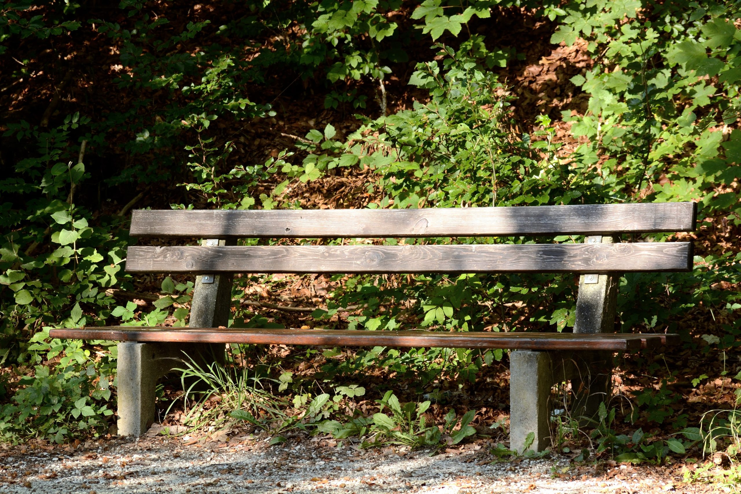 Are You Building Your Bench?